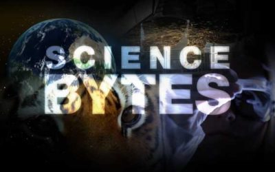 First five Science Bytes pilot episodes completed