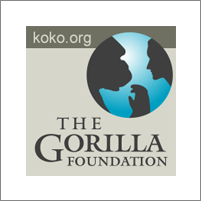 The Gorilla Foundation